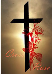 Resurrection Cross Rose